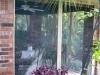 mintonfromside (1)