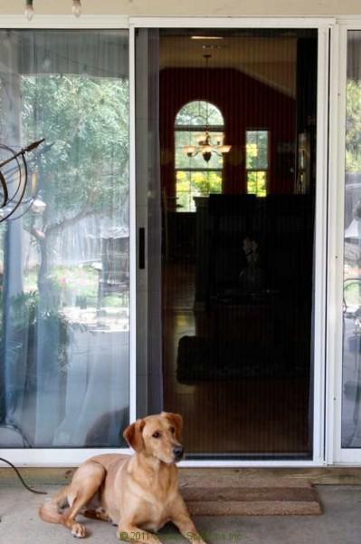 Moline Sliding Patio Retractable Door Screen 8