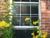 Plisse Window - Outside - White - In Use - with yellow flowers