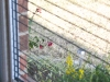 Plisse Retractable Window Screen