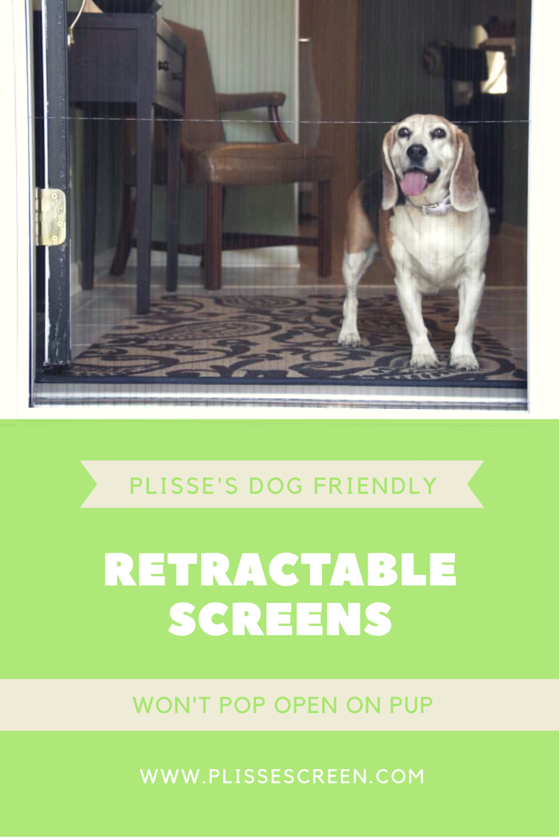Dogs and Retractable Screen Doors